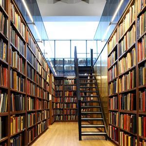 Библиотеки Большого Игнатово